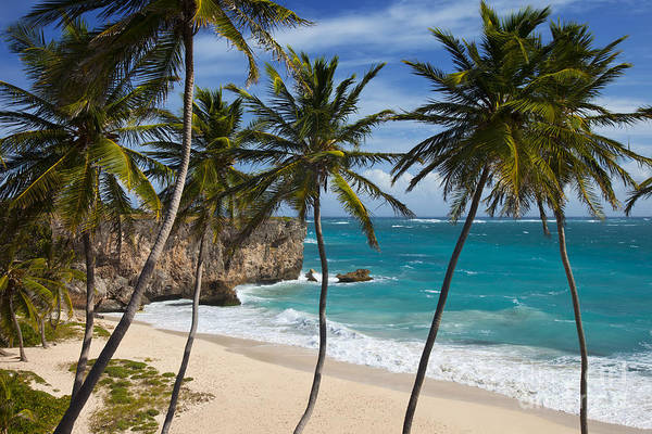 Poster featuring the photograph Barbados Beach by Brian Jannsen