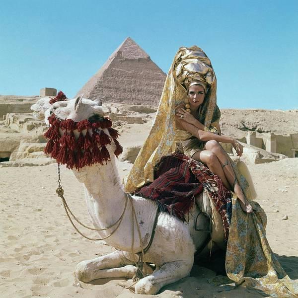 Baronne Van Zuylen On A Camel Poster