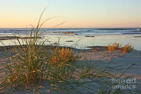 Beach Morning Poster