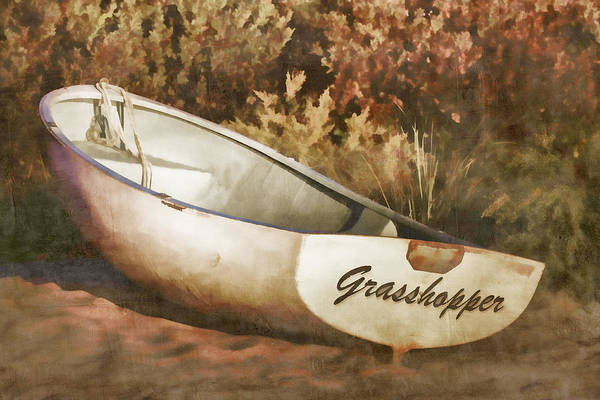 Beached Rowboat Poster