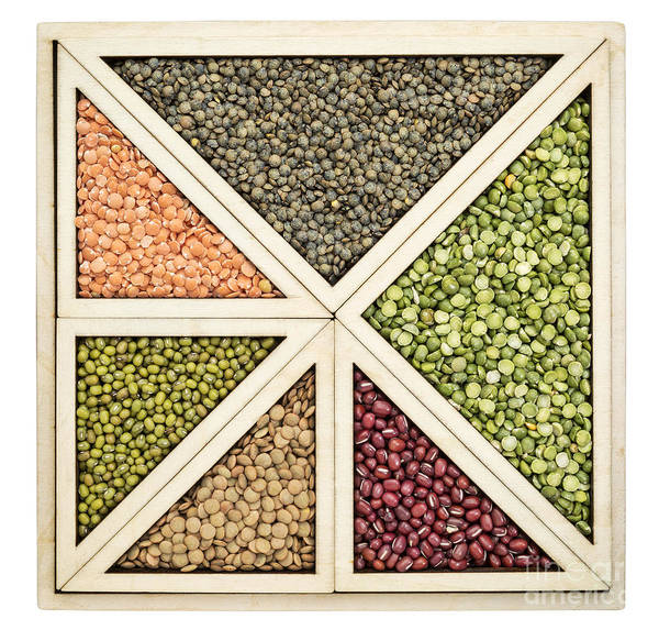 Beans And Lentils Abstract Poster