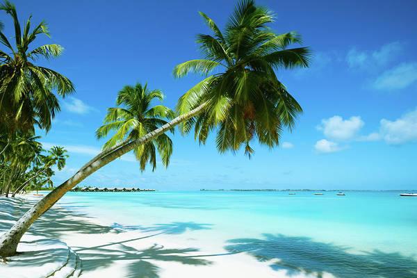 Beautiful Beach Resort Poster