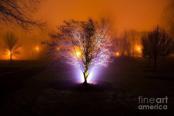 Beautiful Foggy Night 2 Poster