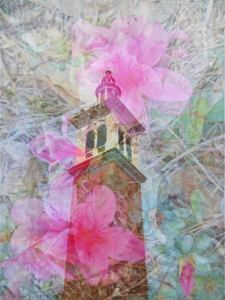 Bell Tower Wrapped In Spring Poster