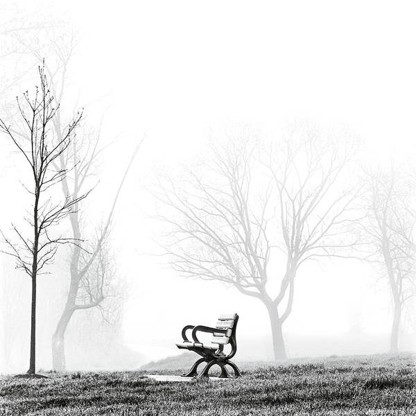 Poster featuring the photograph Bench by Brian Carson