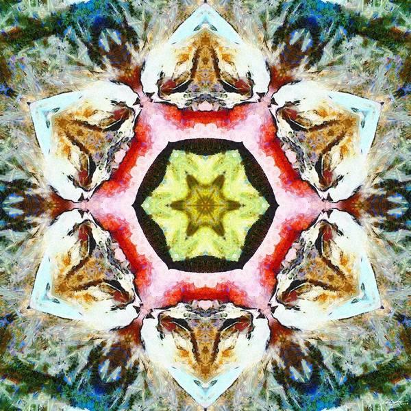 Blooming Fibonacci Poster