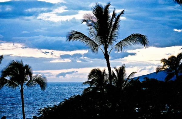 Blue Hawaii Sun 81 Poster