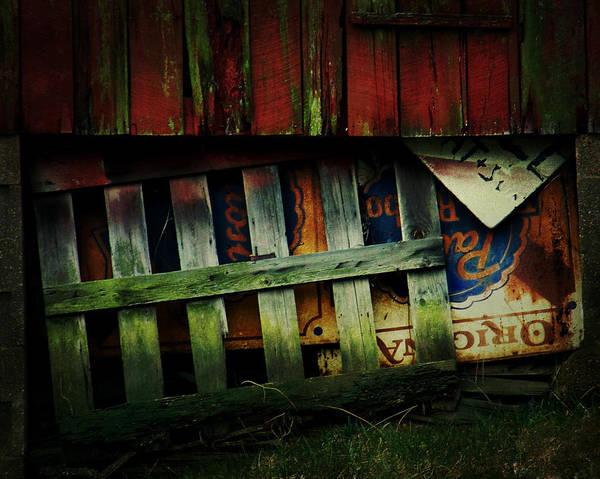 Blue Ribbon Landscape Poster