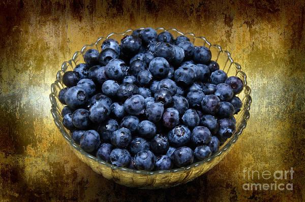 Blueberry Elegance Poster