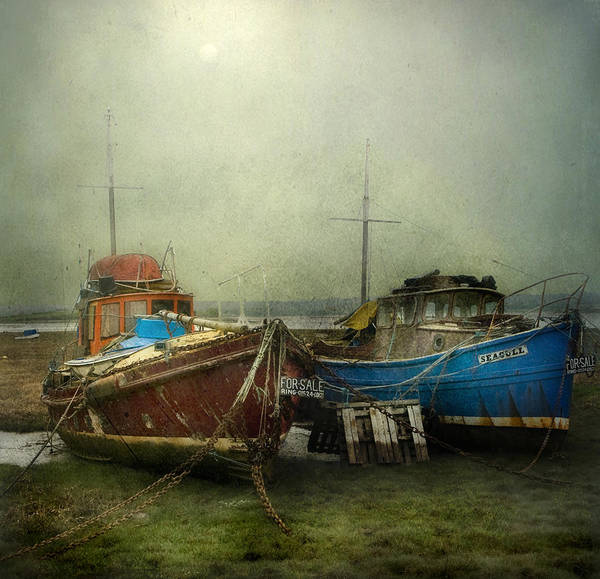 Boats For Sale Poster
