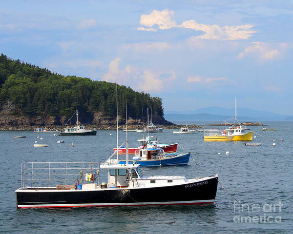 Boats In Bar Harbor Poster