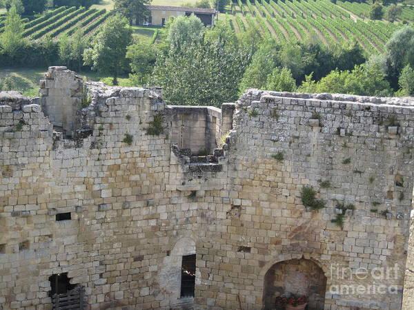 Bordeaux Castle Ruins With Vineyard Poster