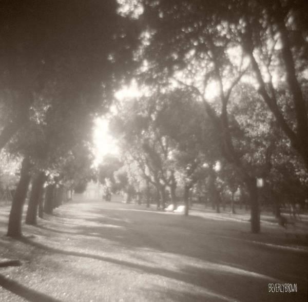 Borghese Gardens Path Poster