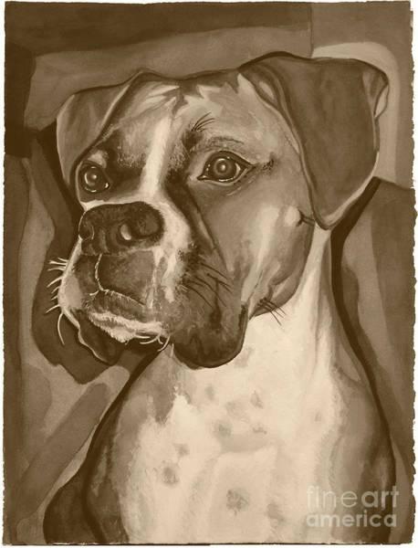 Boxer Dog Sepia Print Poster