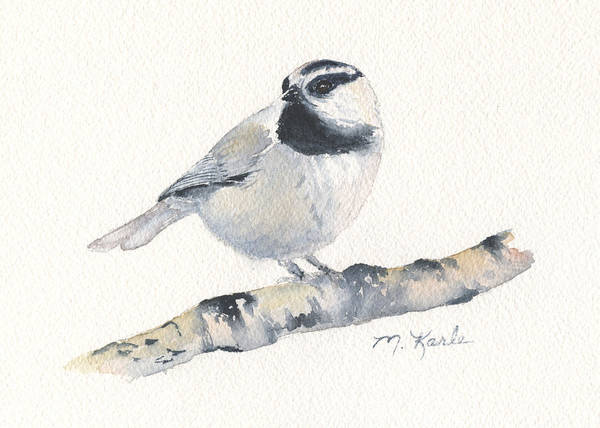Bozeman Native - Mountain Chickadee Poster