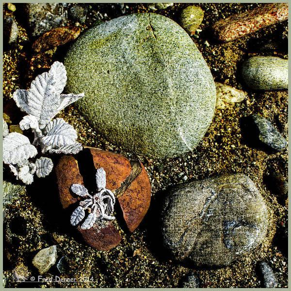 Broken Rock Dryas Poster