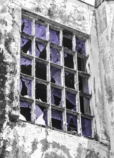 Broken Windows With Birds Poster