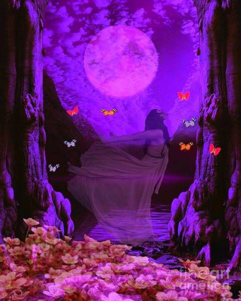 Butterflie Fantasy Scene Poster