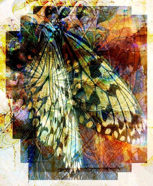 Butterfly 3 Poster