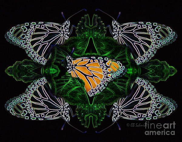 Butterfly Reflections 07 - Monarch Poster