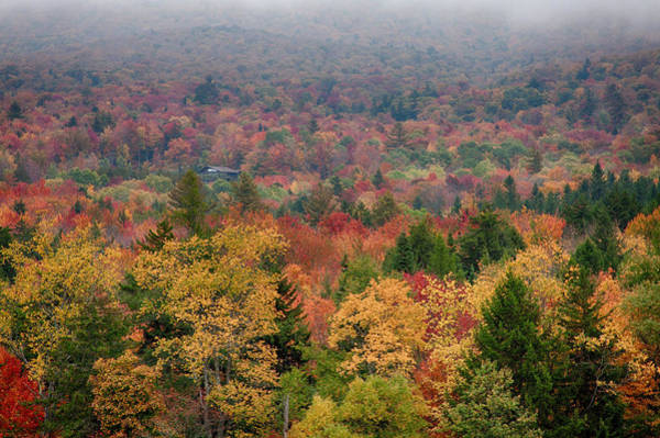 Cabin In Vermont Fall Colors Poster