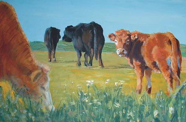 Calf Painting Poster
