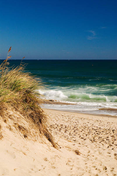 Cape Cod Massachusetts Beach Poster