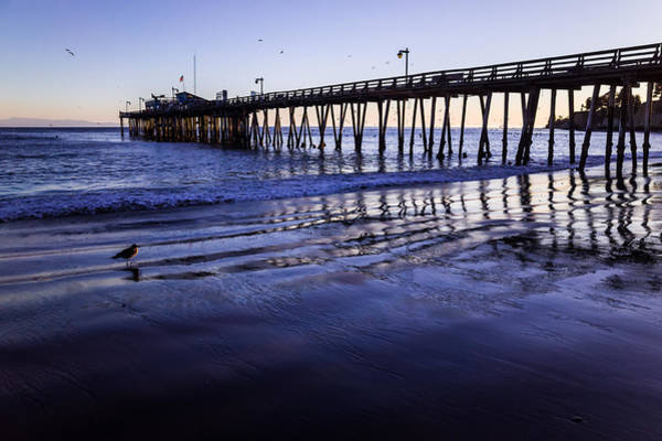 Capitola Wharf Reflections Poster