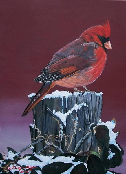 Cardinal Winter Songbird Poster