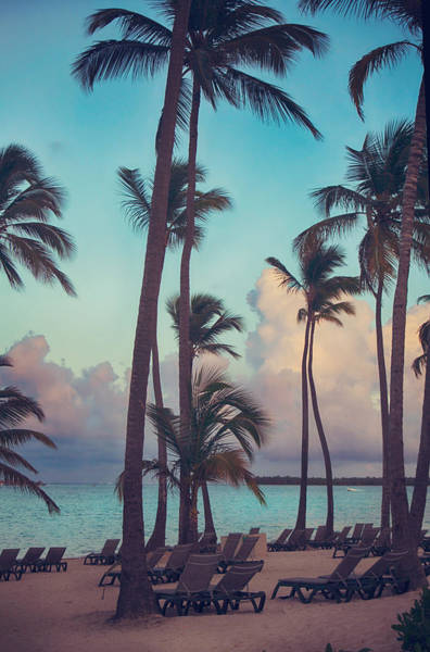 Caribbean Dreams Poster
