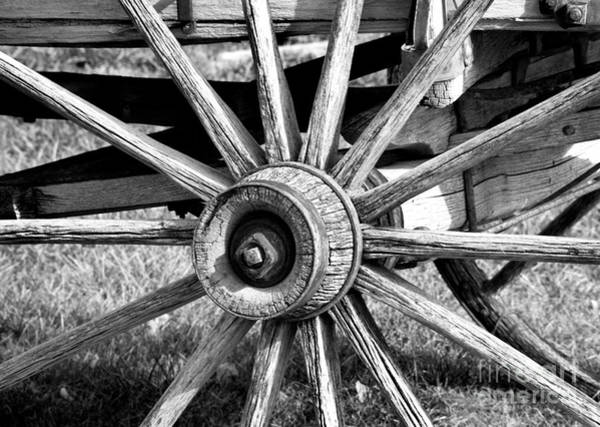 Poster featuring the photograph Cart Wheel by Mae Wertz