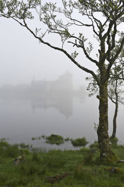 Castle Kilchurn Tree Poster
