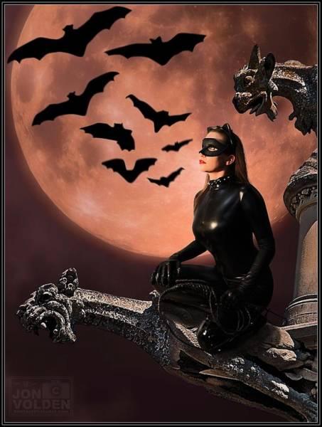 Cat Vs Bat Poster