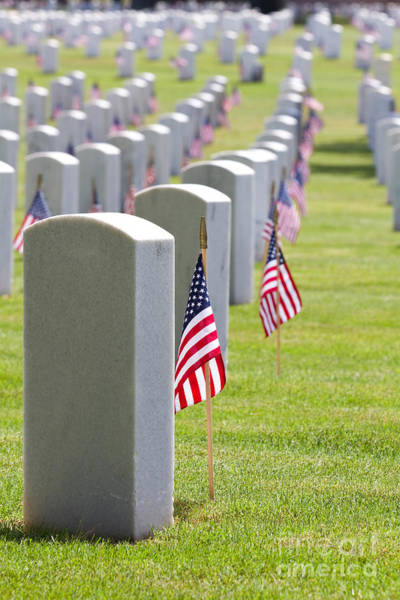 Cemetery Memorial Day Poster