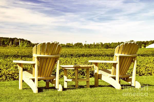 Chairs Overlooking Vineyard Poster