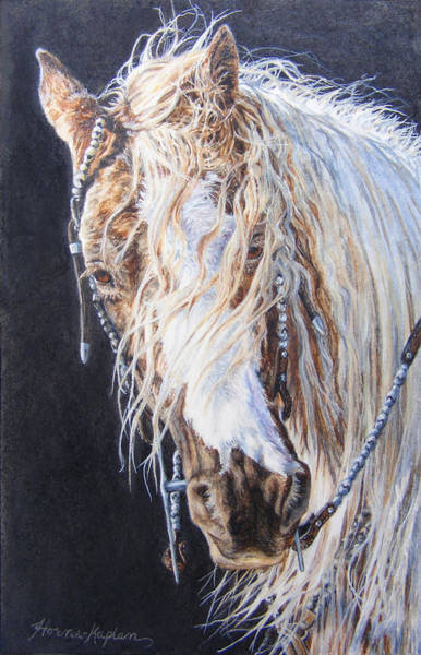 Cherokee Rose Gypsy Horse Poster