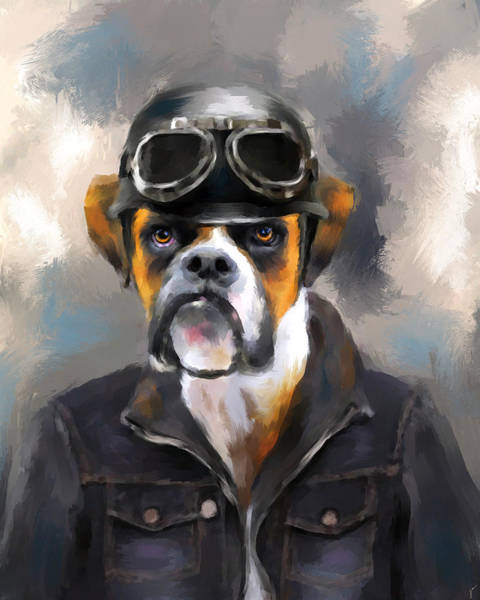 Chic Boxer Aviator Poster