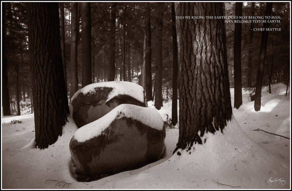 Chief Seattle - Sunlight On A Winter Woods Poster