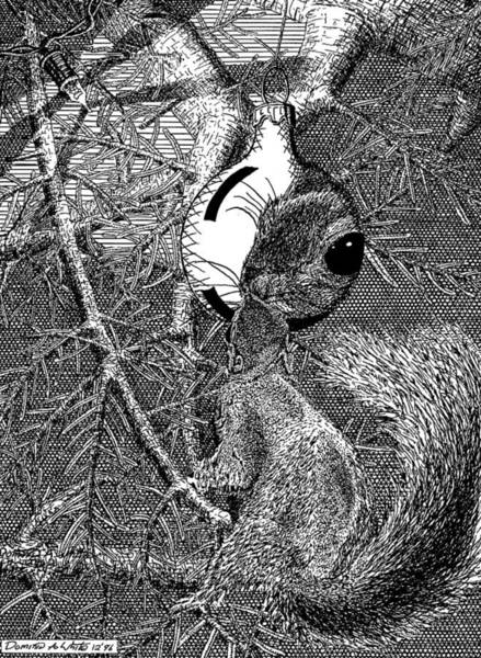 Christmas Tree Squirrel Poster
