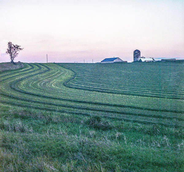 Farm Fields At Dusk Poster