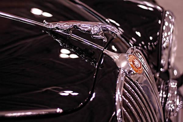 Classic Jaguar Poster