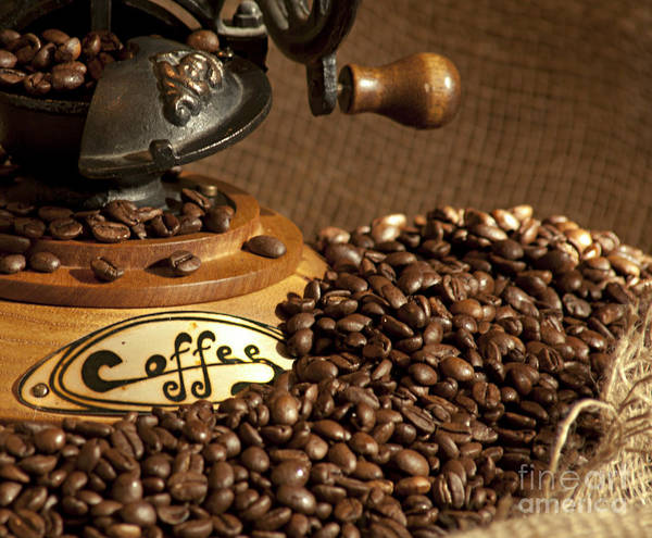 Coffee Grinder With Beans Poster