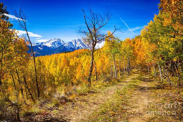 Colorado Backcountry Autumn View Poster