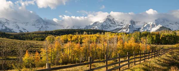 Colorado Gold Panorama Poster