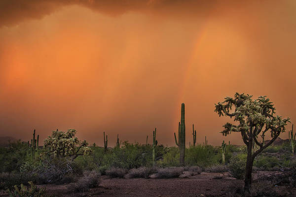 Colorful Rainbow With Dust Storm At Lost Dutchman State Park  Poster