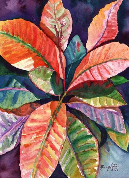 Colorful Tropical Leaves 1 Poster