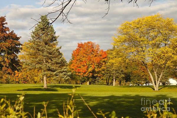 Corning Fall Foliage 5 Poster