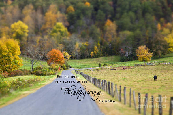 Cow Pasture With Scripture Poster