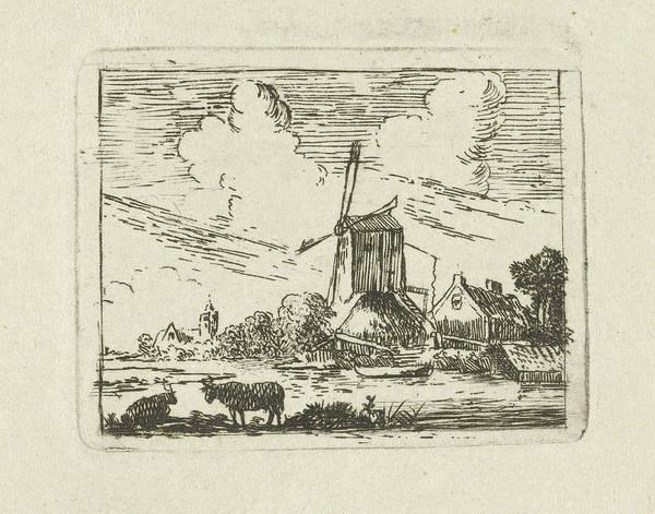 Cows On A Shore, Simon Klapmuts Poster