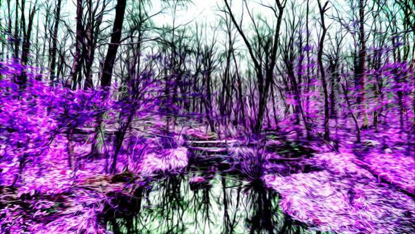 Creek By Purple Poster